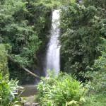 Wasserfall Moshi Tansania