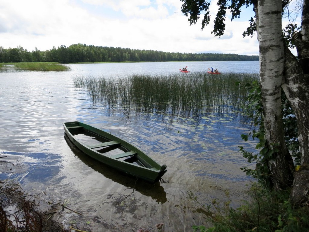 Ein Ruderboot und Seegras auf dem Utenos See in Litauen.