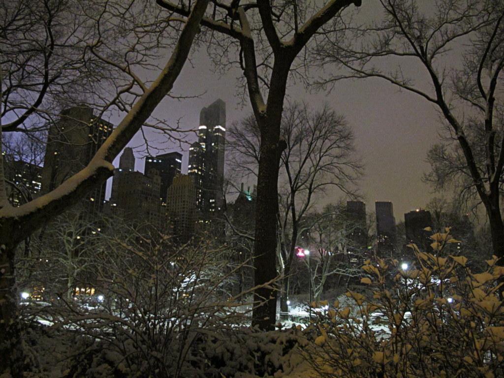 Ich hab mir New York selbst entdeckt. Was sollte ich anderes tun, alle Hostels waren voll.