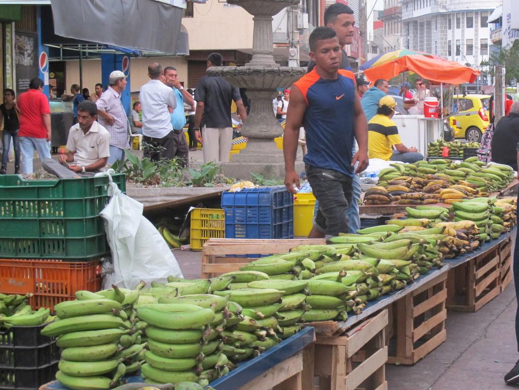 Panama ist das Land der Bananen - aber nicht meiner Träume.