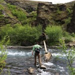 Flussquerung Glymur