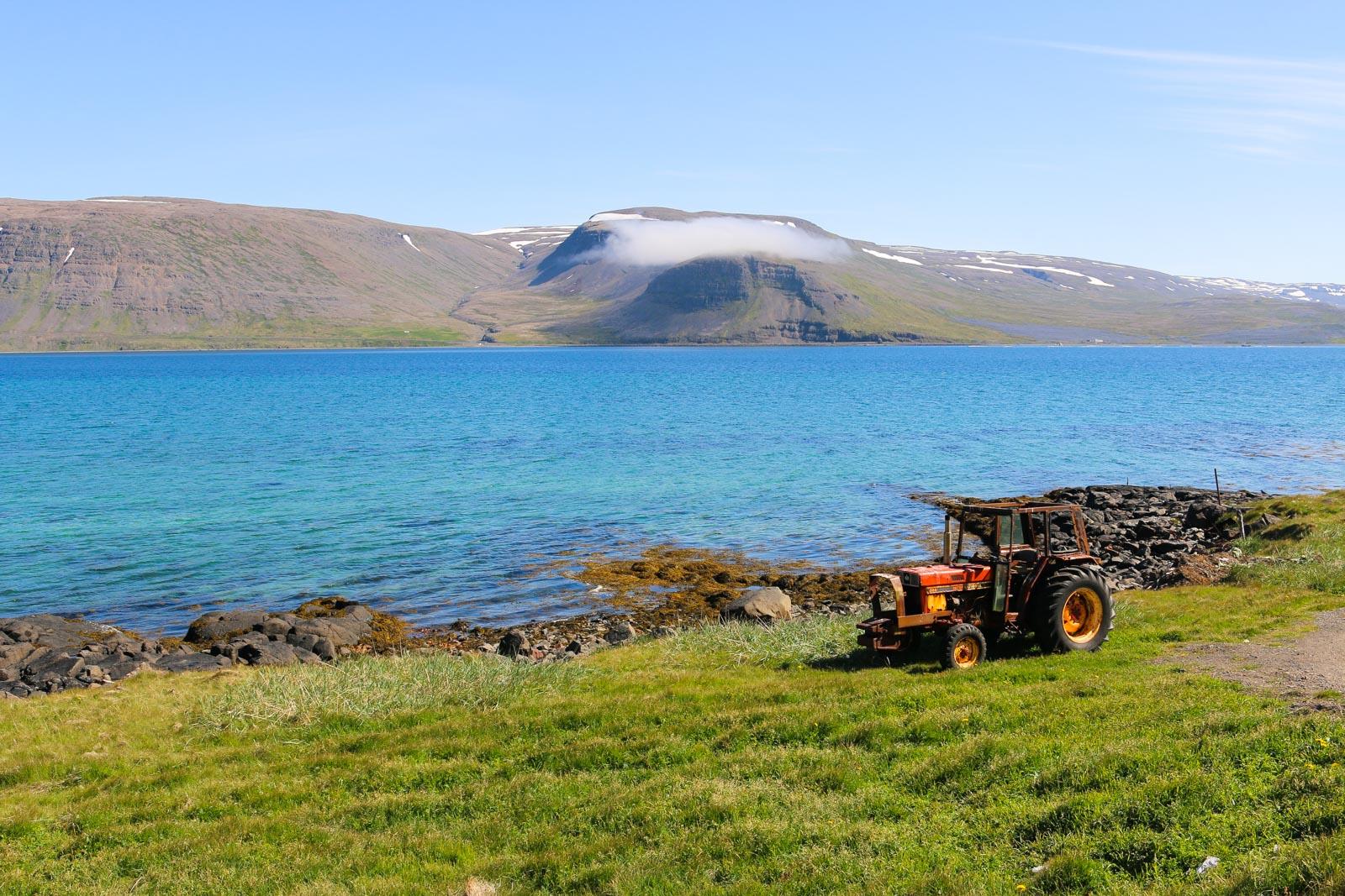 Die Kreuzung lag direkt im Patreksfjörður, der zu den schönsten der Westfjorde gehört - aber auch zu denen mit dem geringsten Verkehr und den meisten Fliegen.
