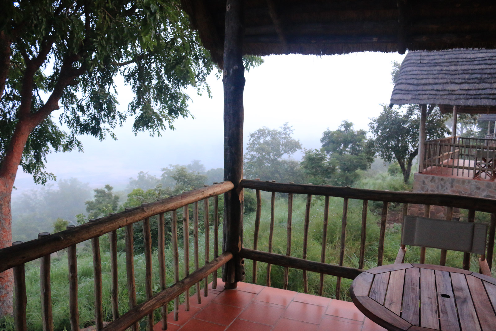Der Blick vom Balkon meines Chalets in der Zaina Lodge im Mole National Park: Am Abend sah ich unterhalb der Hütte weiße Augen durch das Gras schleichen.