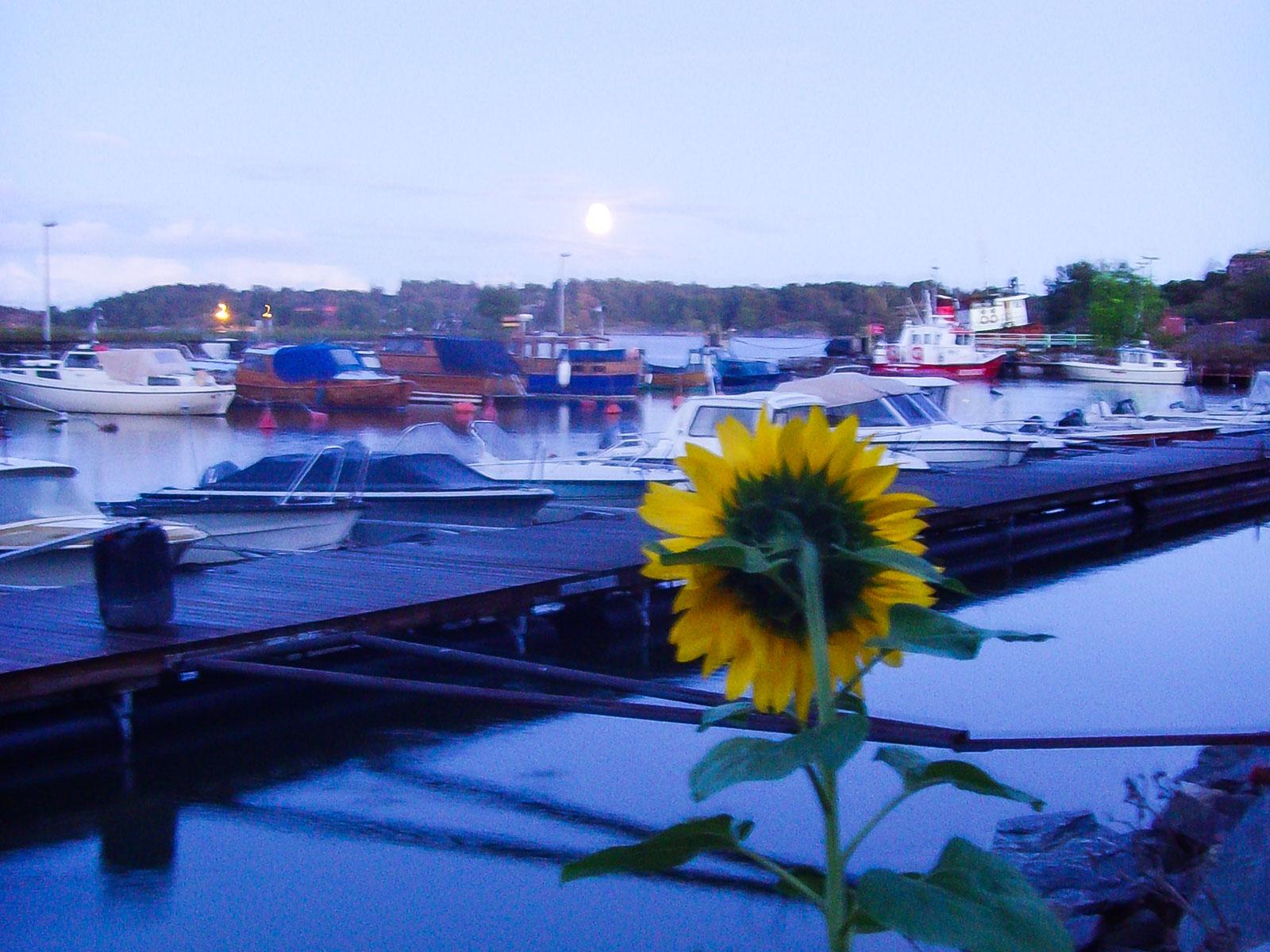 In Suomenlinna kann man sich in der blauen Stunde gut entspannen.