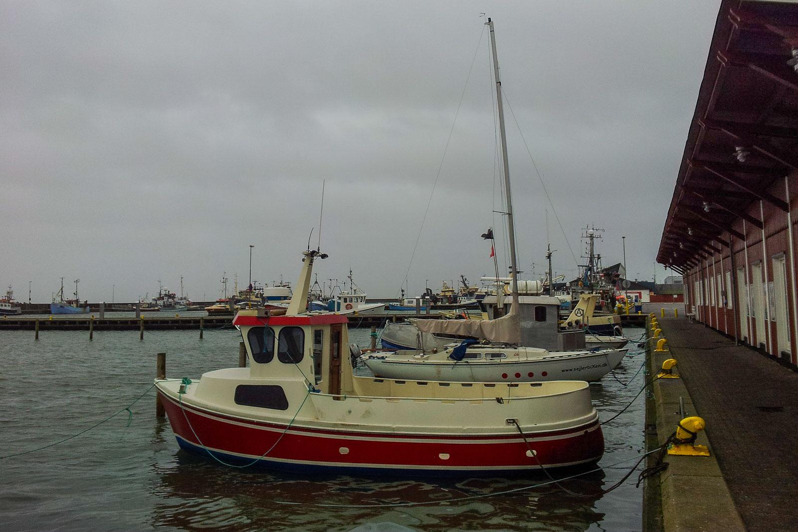 Dänemark Hafen Fisch kaufen