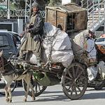 Pakistan Kutsche