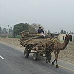 Pakistanische Verkehrsmittel